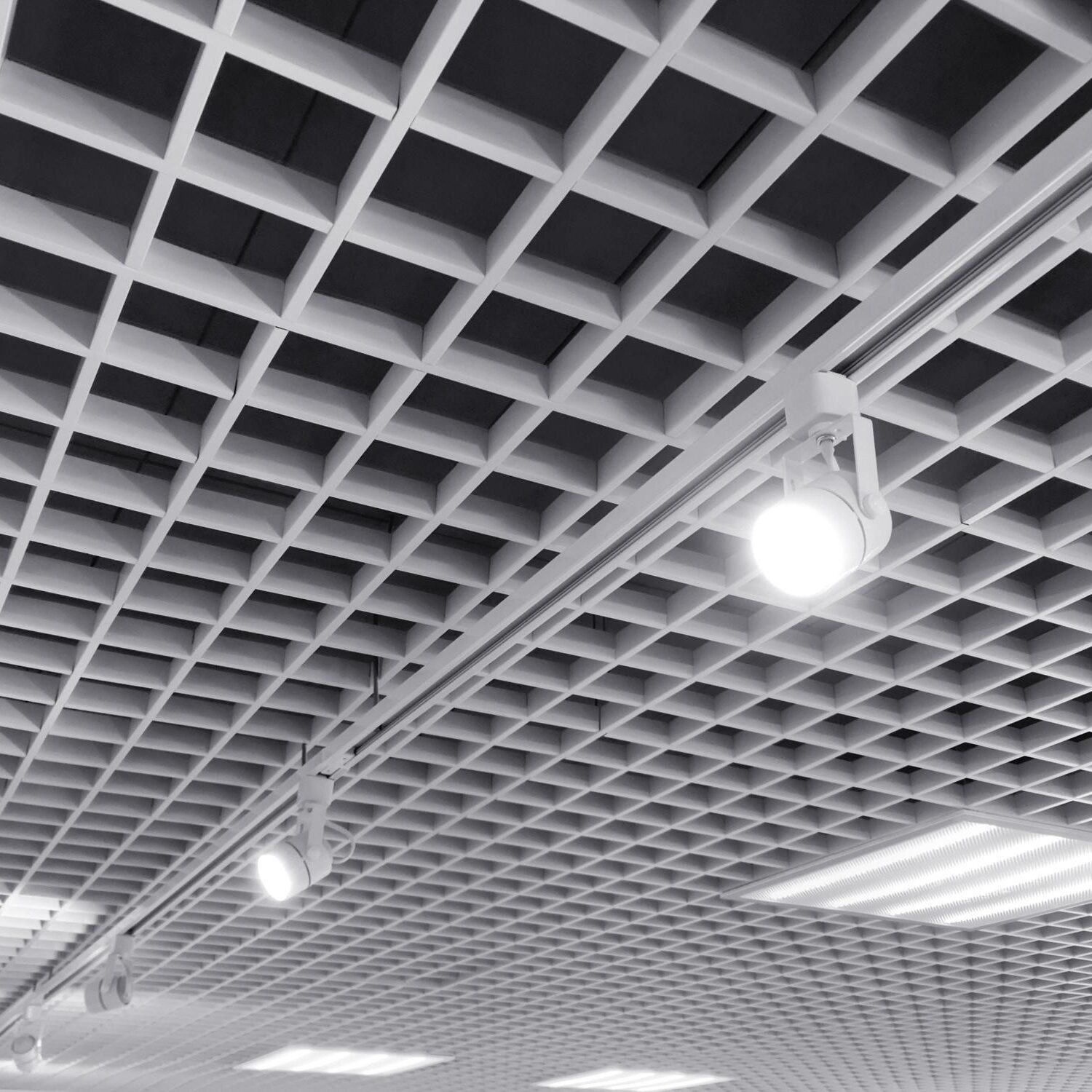 row of bright halogen spotlights on exhibition ceiling grid